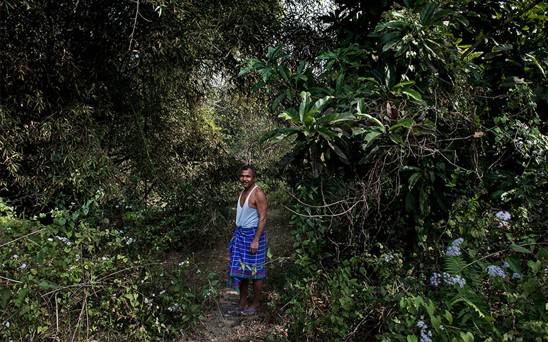 hindu single men in forest Payeng stands in his forest he single-handedly planted in majuli production still courtesy of will mcmaster.